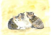 Les 3 chatons