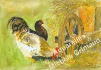 Le coq et sa poule